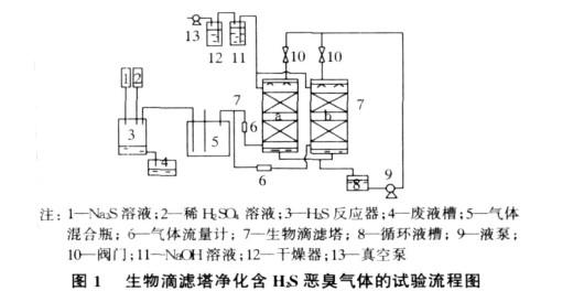 研究鲍尔环和阶梯环填料对H2S废气净化效率